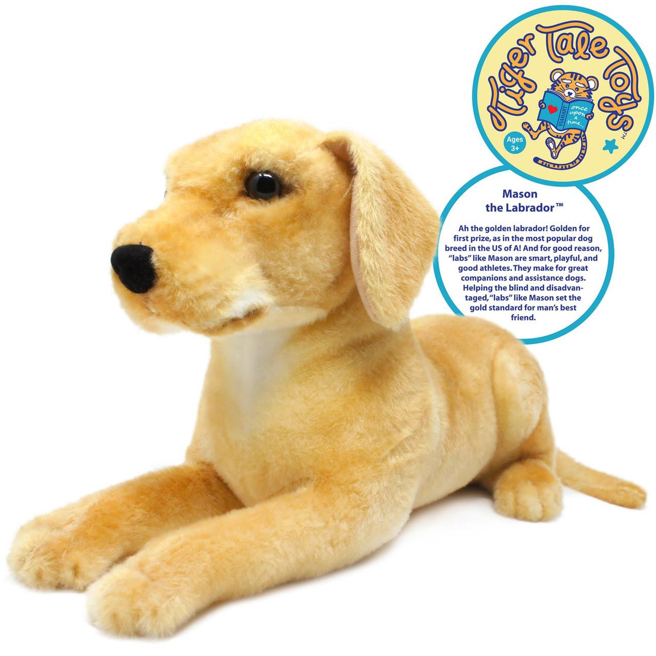 Set Of Dog Stuffed Animals, Mason The Labrador 19 Inch Large Labrador Dog Stuffed Animal Plush By Tiger Tale Toys Viahart Toy Co