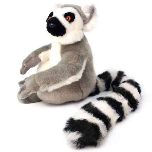 Ringo The Ring Tailed Lemur 20 Inch With Tail Madagascar Lemur