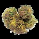 The Green Nursery - Lifter Hemp Flower