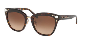 COACH HC8266H 512074 Dark Tortoise Square Women's 53 mm Sunglasses