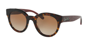 COACH HC8265 512013 Dark Tortoise Round Women's 51 mm Sunglasses