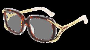 GUCCI GG0648OA 002 Havana Square Women's 55 mm Eyeglasses