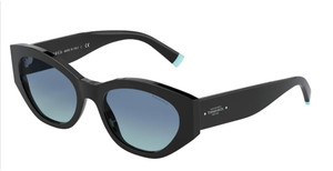 TIFFANY TF4172 80019S Black Oval Women's 54 mm Sunglasses