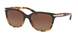 COACH HC8132 5438T5 Black Tortoise Cat Eye Women's 57 mm Sunglasses