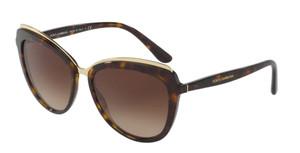 DOLCE & GABBANA DG4304F 502 13 Havana Cat Eye Women's 57 mm Sunglasses