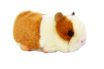 Auswella® Henry the Hamster©