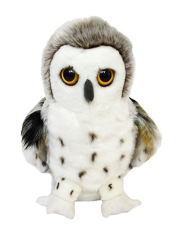 Auswella® Glacier Elegant Snowy Owl ©