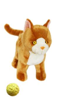 Marmalade Orange Cat