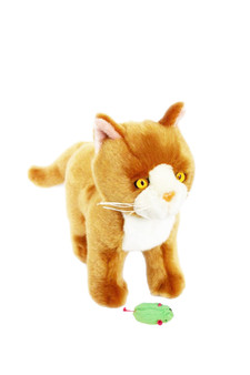 Nutmeg Plush Orange Kitten