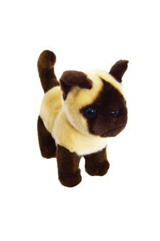 8 Inch  Siamese Kitten Lancelot- Cat