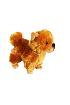 8 Inch  Mini Chow Puppy Dog Anisa