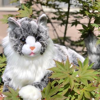 Seraphina Laying Maine Coon Plush Cat