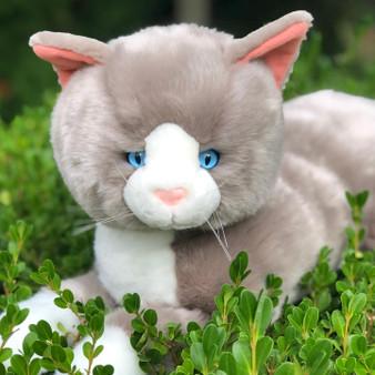 Greyson  Grey Plush Cat