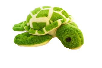 Mini 8 Inch Turtle Plushies