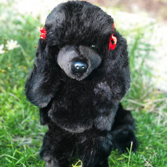 Auswella Plush Black Standard Poodle Bordeaux