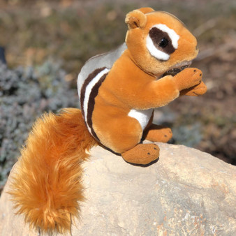 Coming Soon- Chipster Mini Chipmunk