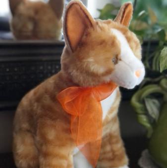 Ginger™ Orange Tabby  Cat