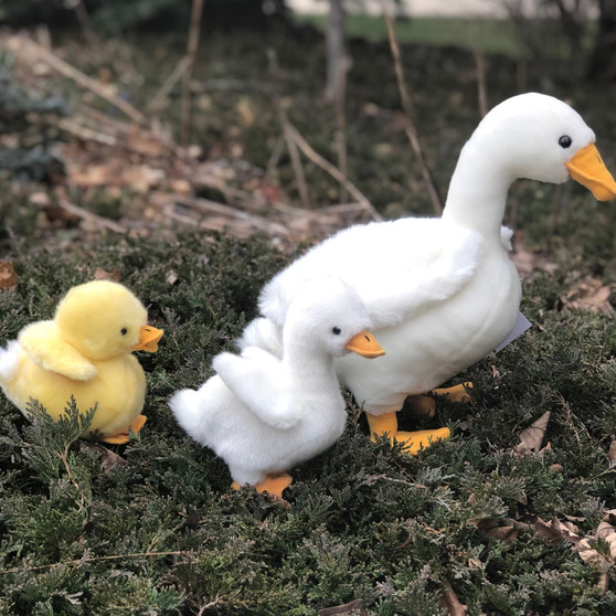 Mother Goose with Baby Duckling and Baby Gosling©