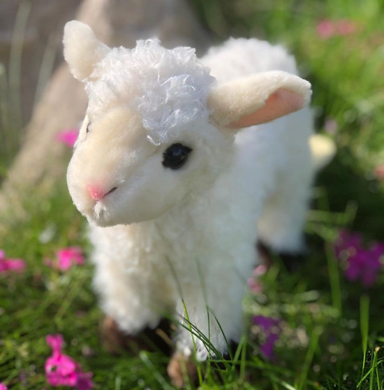 Coming Soon-Weezie™ Little Lamb