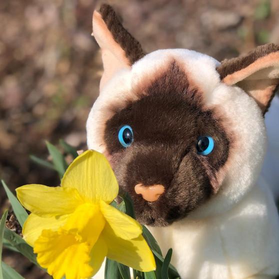 Auswella Plush Floppy Siamese Cat