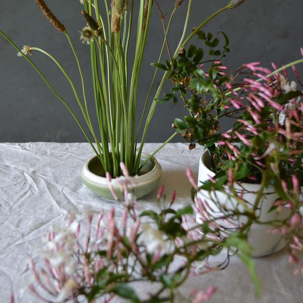 botany-kenzan-grasses