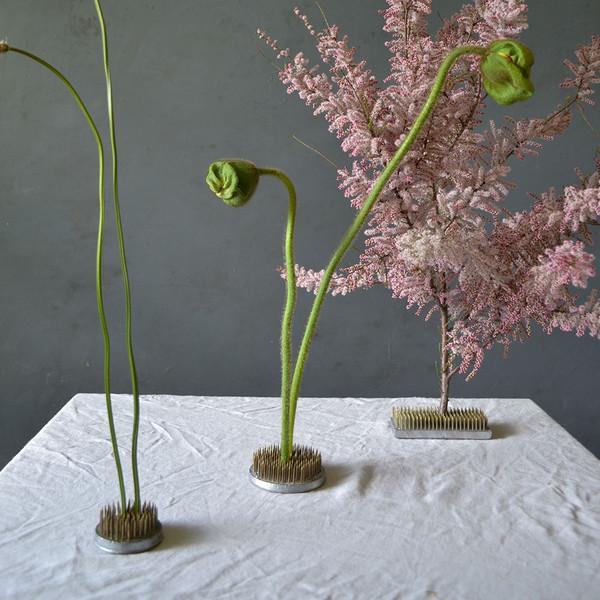 botany-kenzans-with-stem-sizes
