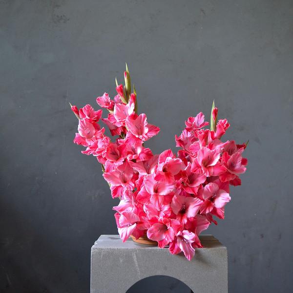 botany-kenzan-long-arrangement-gladioli