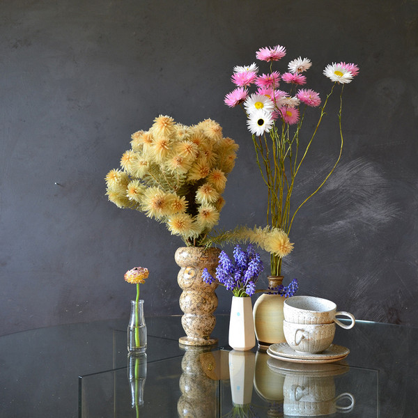 paper-daisies-and-phylica-display.