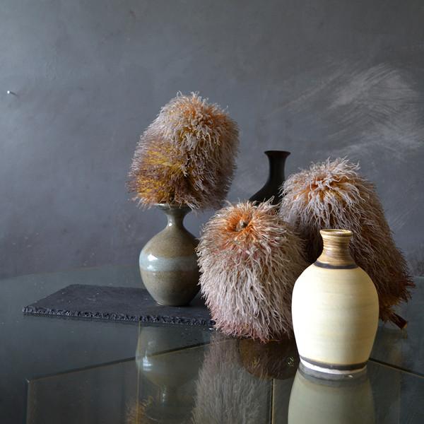 Possum-banksias-styled