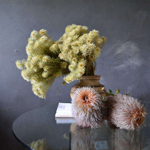 dried-phylica-and-possum-banksia