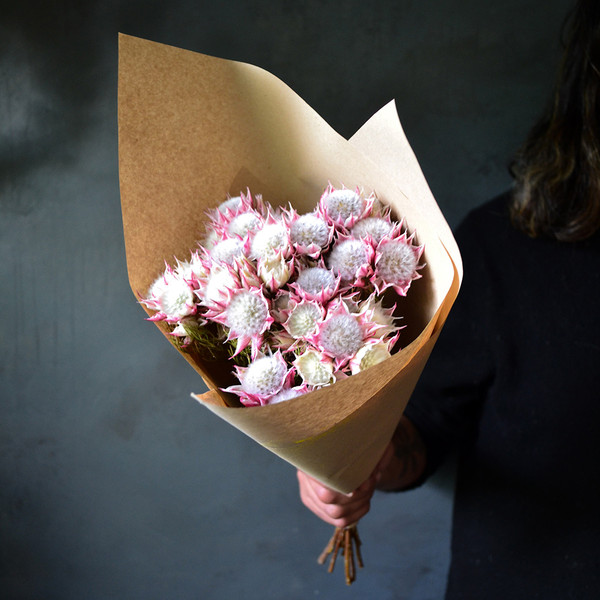dried-blushing-bride-bunch-wrapped