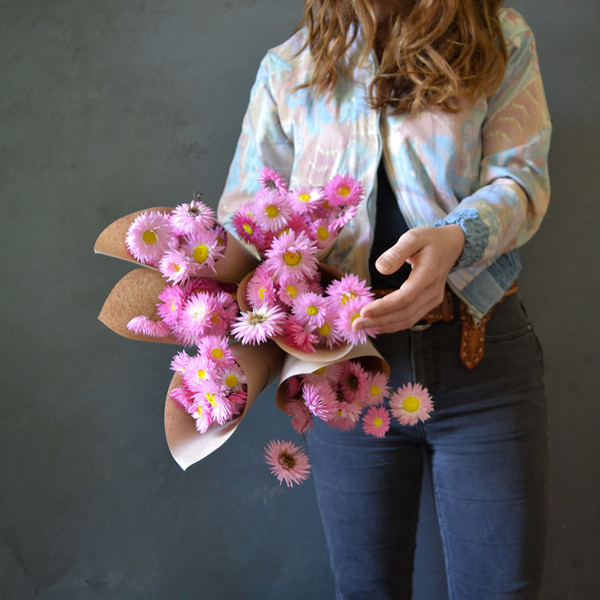 bunches-of-dried-paper-daisies