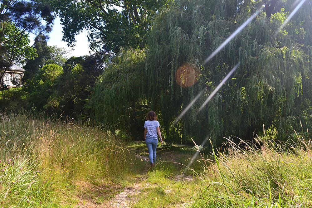 botany-ellen-foraging.jpg