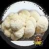 10cc Liquid Mushroom Culture Lion's Mane