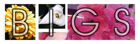 bigs-logo.png