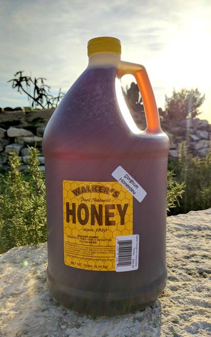 A Gallon Of Sorghum Honeydew Honey.
