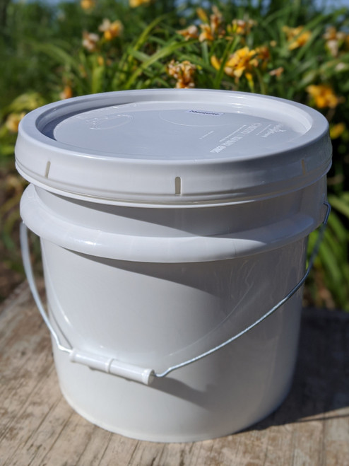 Orange Blossom Honey - 3.5 Gallon Bucket (42lbs)