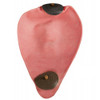 CLETO REYES LATEX 2-VALVE BLADDER