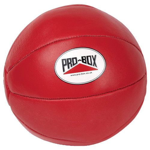 PRO BOX LEATHER MEDICINE BALLS