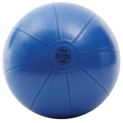 FITNESS MAD STUDIO PRO 500KG SWISS BALL