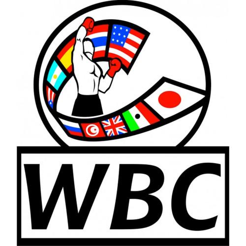 WBC CHALLENGER PATCH