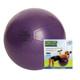 FITNESS MAD STUDIO PRO 500KG SWISS BALL & PUMP