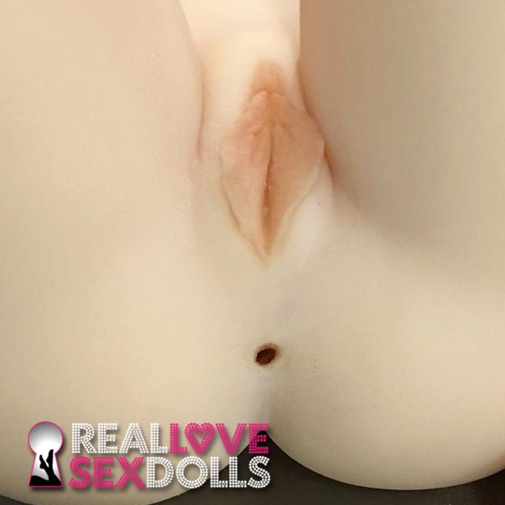vagina and labia