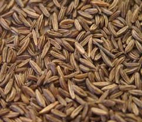 Caraway Seed Whole Organic