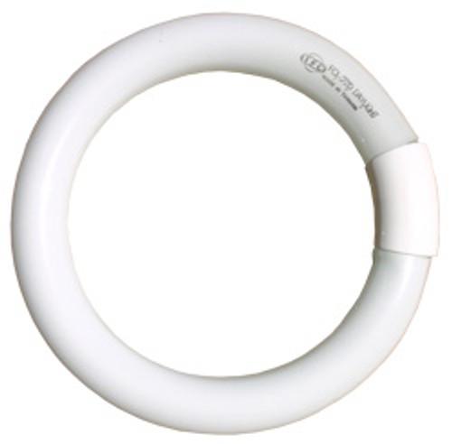 Light Bulb - Magnifying Lamp
