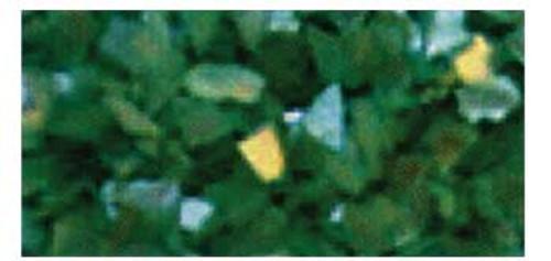 Glam & Glits Crushed Sea Shell - Mint to be .5oz