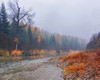 October image in the From Around the Ranch 2020 Calendar - Trees in autumn drab  line the banks of the Fisher River