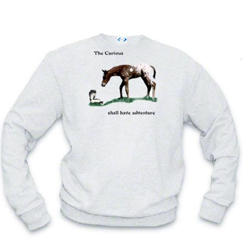 Curious Colt Sweatshirt