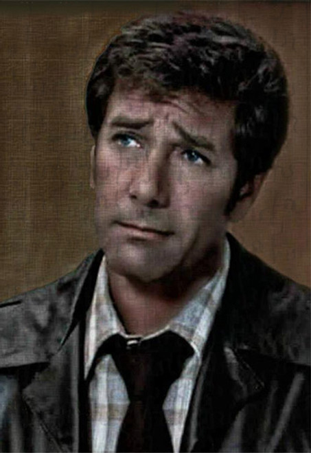 Robert Fuller Jigsaw Puzzle - worried Dr. Brackett