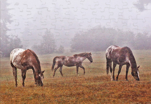 Foggy morning jigsaw puzzle